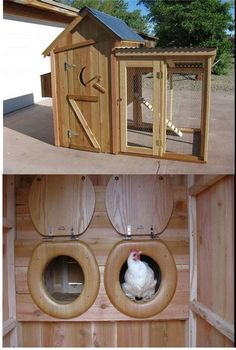 Chicken coop...@Amy Lyons Lyons Lyons Lyons Ruden  ....the toilet seats had me laughing so hard
