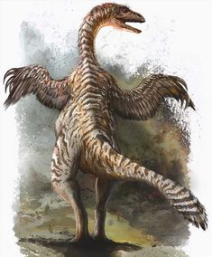 The Alwalkeria was a dinosaur which was discovered in India. It is believed to have existed about 235 to 215 million years ago. This phase lies in the Carnian and Norian ages of the Triassic period. Dinosaur Art, The Good Dinosaur, Dinosaur Sketch, Dinosaur History, Dinosaur Crafts, Prehistoric World, Prehistoric Creatures, Feathered Dinosaurs, Cool Dinosaurs