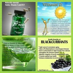 Shop weight management, nutrition, personal care products and dietary supplements today.