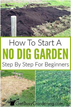 No Till Garden, Garden Hoe, Garden Steps, Easy Garden, Lawn And Garden, How To Garden, Starting A Vegetable Garden, Vegetable Gardening, Organic Gardening Tips
