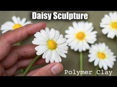 Polymer Clay Daisy Flower Tutorial // How to Sculpt with Clay - YouTube