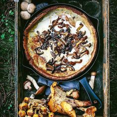 Farm to table. Savory wild mushroom dutch baby pancakes with caramelized onion roasted garlic & a garden of fresh herbs. Simplicity. Perfection. . Courtesy: Eva Kosmas Flores | @evakosmasflores | Staub @staub_usa . . . Blog: http://ift.tt/1vCV6pv #riseandshine #morning #sunrise #love #heaven #breakfast #caffeine #coffee #java #espresso #latte #travel #instatravel #travelgram #foodie #chef #winning #savory #pancakes #waffles #instagood #foodstagram #foodgasm #foodpics #foodporn #photooftheday…