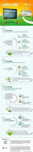 Fun #Lawn and Home Facts & Figures from #TruGreen #Infographic #MC (sponsored)