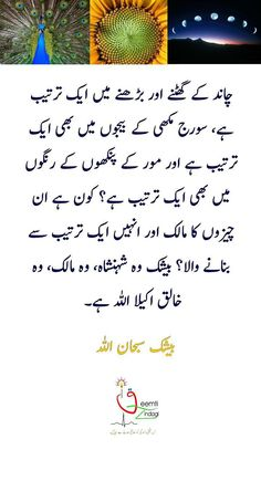Urdu Quotes, Islamic Quotes, Jumma Mubarak, Sentences, Allah, Arabic Calligraphy, Inspirational Quotes, Words, Frases