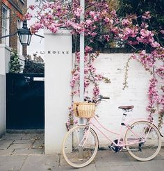 (Loc) Posted on May 26 2016 at 09:02PM: Dreaming about bicycle spring and flowers via @alexkdg ____________________________________________ #flower #beauty #keepitsimple #love #life #bycicle #inspo #live #simple #tbt #australia #travel #europe #soon #dreaming #home #lifestyle #ihavethingswithwalls #australia #sydney by stegentilini