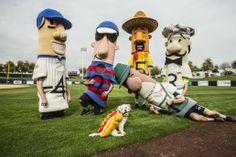 Hank the #BallparkPup Makes His Sausage Race Debut