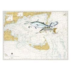 Steve Whitlock Nautical Chart Art - Nantucket Slam