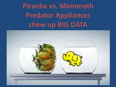 Mammoth – Predator Appliances that chew up Big Data Appliance Reviews, Poll Results, Big Data, Predator, Appliances, Posts, Blog, Gadgets, Accessories