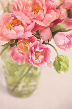 ❀ ♢♦ ♡ ❊ ** Have a Nice Day! ** ❊ ღ‿ ❀♥ ~ Mon 18th May 2015 ~ ❤♡༻ ☆༺❀ .•` ✿⊱ ♡༻ ღ☀ᴀ ρᴇᴀcᴇғυʟ ρᴀʀᴀᴅısᴇ¸.•` ✿⊱╮ ♡ ❊ ** Buona giornata ** ❊ ✿⊱╮
