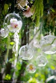 These hanging glass orbs will float behind you at the pergola. We can fill these up with blush and white flowers....