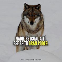 #DiarioDeUnLobo #Frases #iFrases #Quotes #Lobos #Wolves #Lobas #Lobo #Amor #Wolf #Loba #iFrase #FrasesEnEspañol #SocialMedia #Networking #Like #Love #like4Like #Follow #Follow4Follow #iQuote #FrasesEnCastellano #SpanishQuote #Werewolves #Spanishquotes #SocialMedia #SocialMediaMarketing #Actitud