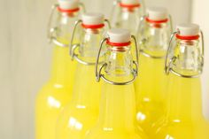 Limoncello - A how to for beginners