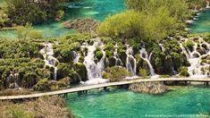 Croatia | Plitvice Lakes National Park (picture-alliance/imageBROKER/P. Williams)
