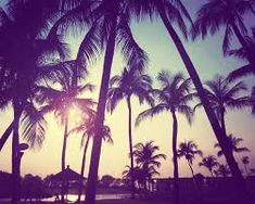I can't wait to holidays