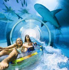 Serpent Slide - Atlantis Paradise Island, Harborside Resort. Photo copyright Atlantis, Kerzner International Resorts Inc.