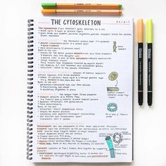"""These notes have an orange color and contain the words """"skeleton"""" and …, … - Studying Motivation Cute Notes, Pretty Notes, Good Notes, School Organization Notes, Study Organization, Revision Notes, Study Notes, Revision Tips, Planning School"""