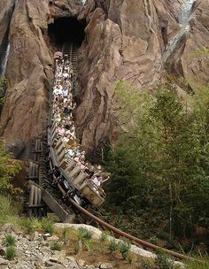 Expedition Everest! A star attraction at Disney's Animal Kingdom!