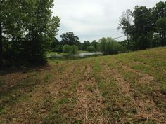 Excellent building site on this waterfront residential lot 2.31 acres m/l in quiet neighborhood, on private lake with restrictions, desired location with small town ambiance in Scotts Hill TN
