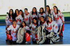 Walkyrias final liga 2014-2015