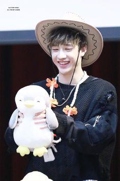 penguin and a bang chan K Pop, Chris Chan, Stray Kids Chan, Idole, Wattpad, Lee Know, Lee Min Ho, Kpop Boy, Kpop Groups