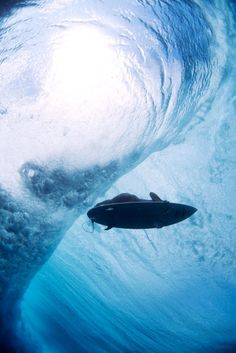 Spectacular Shots of Surfers Underwater by Lucia Griggi #waves #ocean #surfer