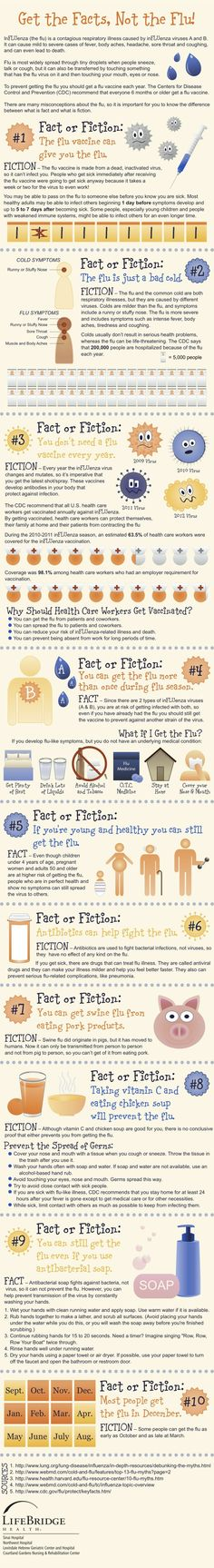 American flu infographic