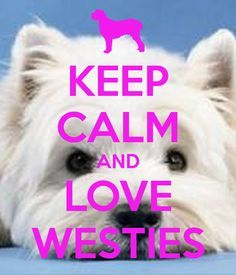 'KEEP CALM AND LOVE WESTIES' Poster
