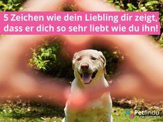 Blog_Liebe