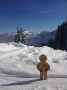 Our Romeo Jolly Ginger, spotted soaking up the winter sun on a short getaway in the Alps. Some gingers have all the luck!
