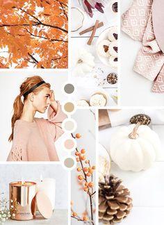 design, branding, mood board, fall moodboard, inspiration, color palette, #moodboard #design #colorpalette