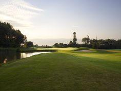 Public Golf Courses, Durham Region, Tree Line, Conditioning, Golf Clubs, Tours, Book, Livres, Books
