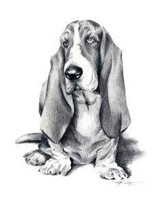 BASSET HOUND Dog Art Print Signed by Artist DJ by k9artgallery