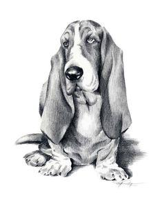 BASSET HOUND Dog Art Print Signed by Artist DJ Rogers