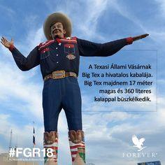 #BigTex #FGR18