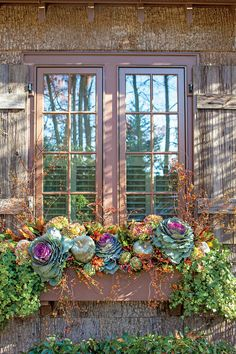 Transitional Window Box Plan ahead for plantings that will transition through the holidays with a few additions Start with ornamental cabbage bittersweet pumpkins dried. Fall Window Boxes, Window Planter Boxes, Window Box Flowers, Plants For Window Boxes, Ornamental Cabbage, Fall Containers, Fall Planters, Autumn Planter Ideas, Fall Potted Plants