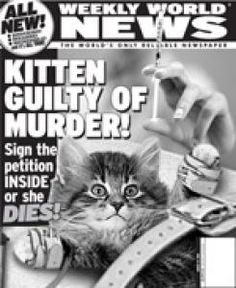 75 best weekly world news images on pinterest funny news headlines