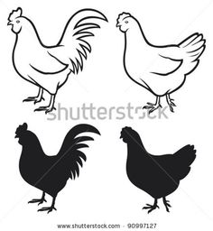 stock vector : rooster (cock) and chicken