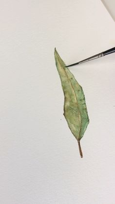 Video tutorial of a willow leaf painting using watercolors. Video tutorial of a willow leaf painting using watercolors. Watercolor Paintings For Beginners, Watercolor Video, Watercolor Leaves, Watercolour Tutorials, Painting Videos, Watercolor Techniques, Drawing Techniques, Painting & Drawing, Watercolor Art
