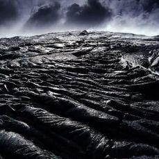 La naturaleza que nos rodea en todo su esplendor, retratada por Lars Lanting