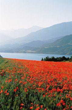 Lac de Serre-Ponçon, Hautes-Alpes, France