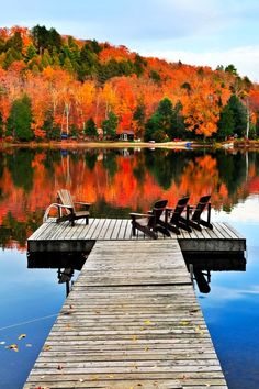 Algonquin Park in Ontario, Canada is one of the most spectacular places to see autumn leaves in North America. Having a cabin to enjoy it from is an added bonus, too!