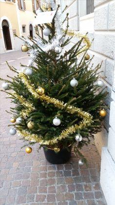 Christbaum Christmas Wreaths, Christmas Tree, Christen, Holiday Decor, Home Decor, Holiday Decorating, Teal Christmas Tree, Decoration Home, Room Decor