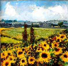 Sunflowers in Cahors