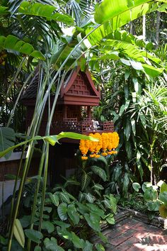 Garden tropical vacations 65 Ideas The Effective Pictures We Offer You About tropical garden Asian Garden, Blue Garden, Garden Pool, Summer Garden, Balinese Garden, Glass Garden, Tropical Landscaping, Tropical Garden, Tropical Plants