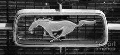 Mustang Car Emblem by Denise Woldring on Fine Art America ~ prints starting @ $28