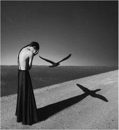 untitled Noell S. oszvald 사진 속 빛이 부드럽게 표현되어 마치 회화 같다. 마그리트의 발생을 얀 쿠샥 방식으로 표현한 느낌이다. 사진가의 젊은 시선이 왠지 모르게 우울하게 느껴졌다.