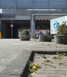 A13  Overschie foto: Heleen van Zantvoort Rotterdam