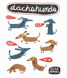 Dachshunds are fun to draw. #dachshund #illustrationoftheday #dachshundsofinstagram #doodleoftheday #lettering