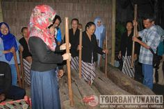 Wisata kampung osing banyuwangi, wisata budaya banyuwangi, adat banyuwangi Tours, Culture