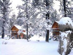 Bosques de Monterreal (Coahuila)  El primer centro de esquí en México; situado en la sierra de Arteaga.